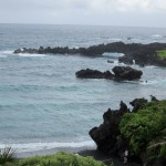 Hawaiian coastline - © Gillian Knox - GillianKnox.com