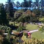 Queen Elizabeth Park - © Gillian Knox - GillianKnox.com